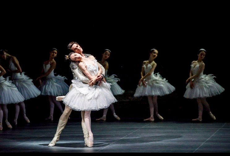 TOP SWAN LAKE interpretations