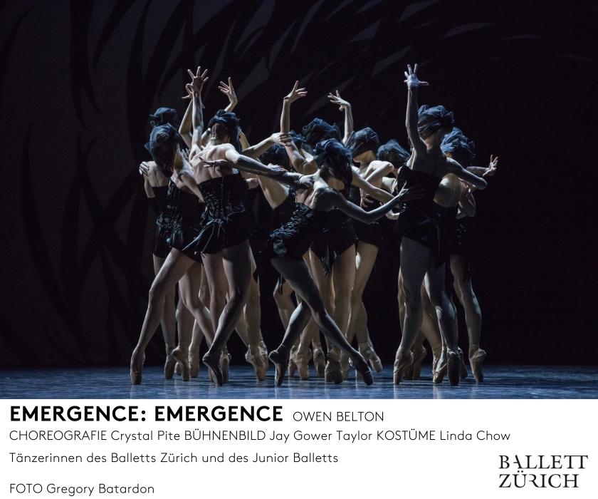 emergence_photo_gregory-batardon_d1a3339_mfooter.jpg