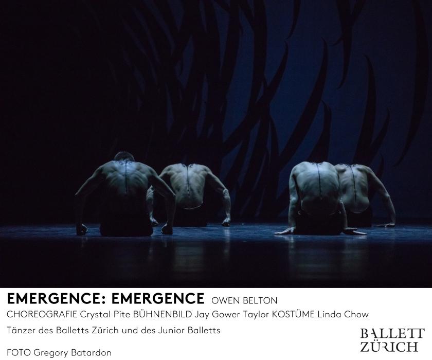 emergence_photo_gregory-batardon_d1a3369_mfooter.jpg