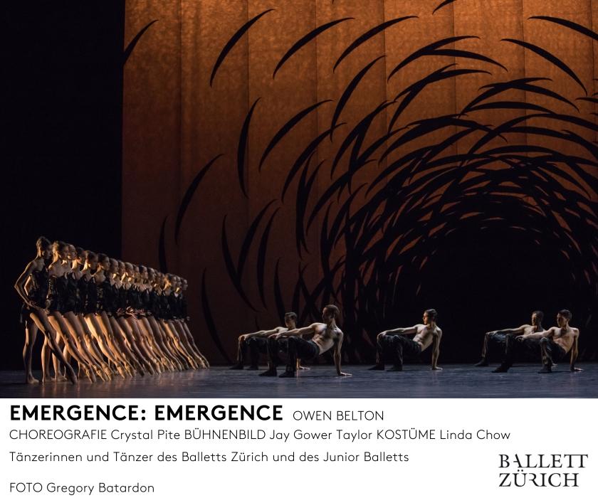 emergence_photo_gregory-batardon_d1a3418_mfooter.jpg