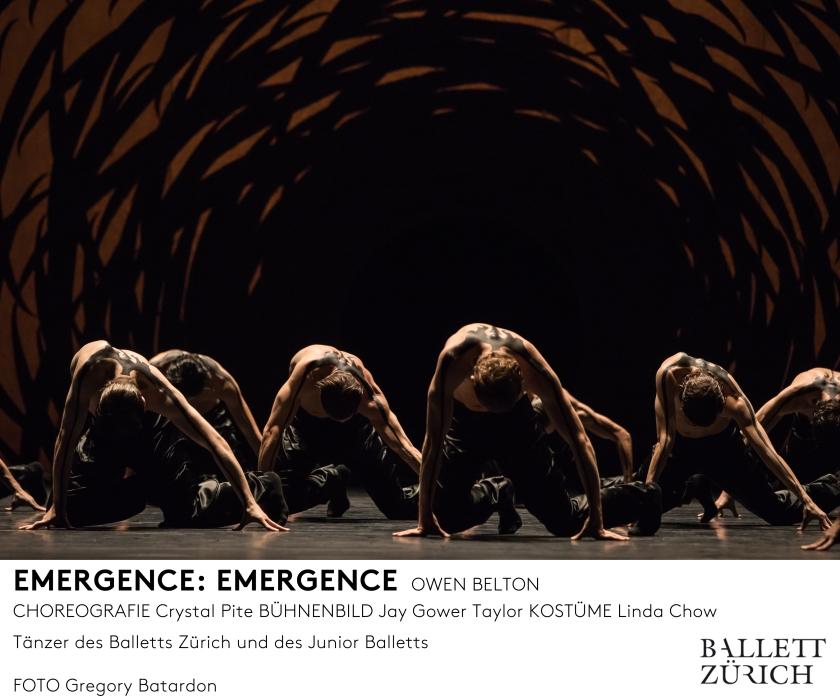emergence_photo_gregory-batardon_d1a3604_mfooter.jpg