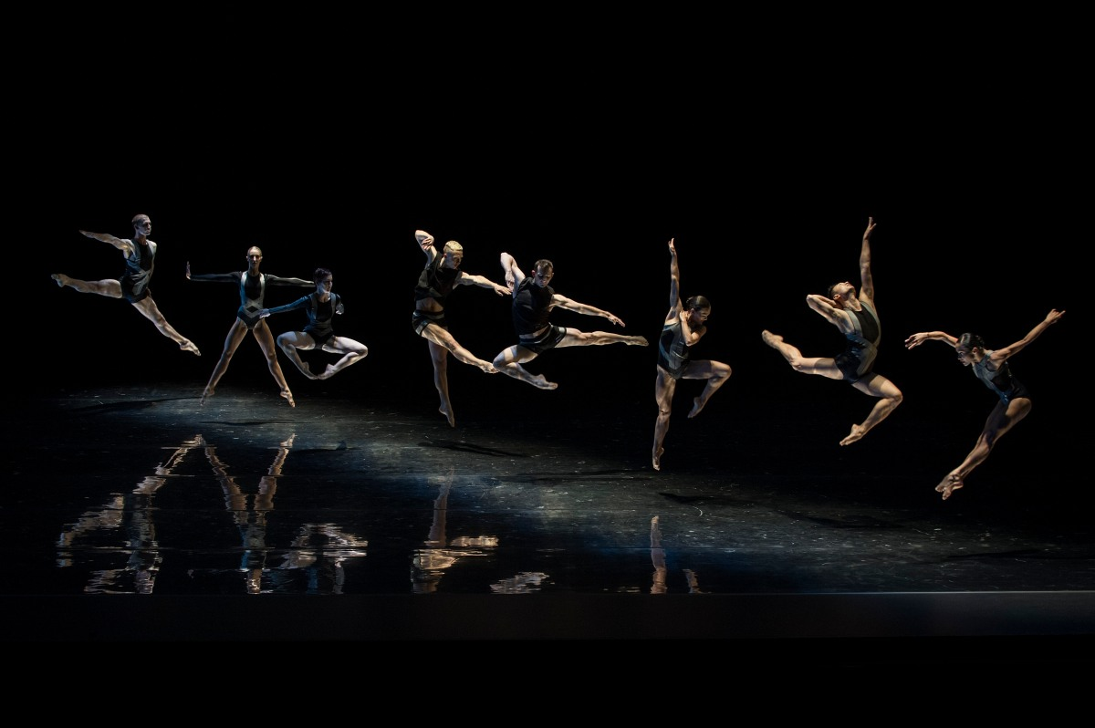 Congratulations to the Sydney Dance Company for 50 great years ofperformances!